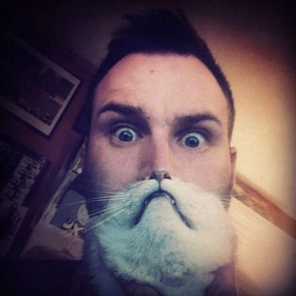cat-beards-13