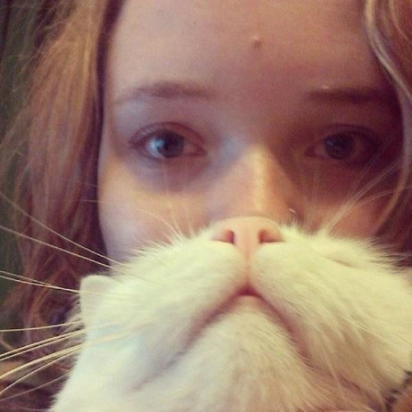 cat-beards-15