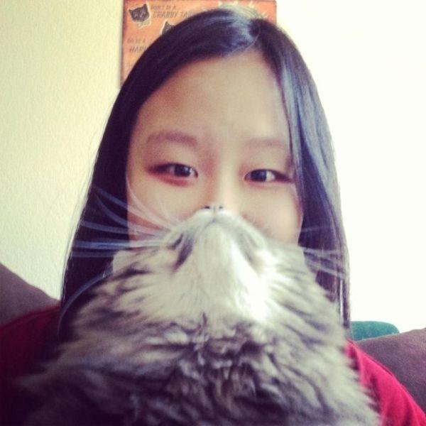 cat-beards-2