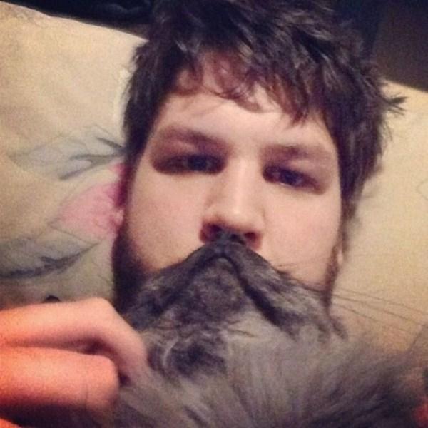 cat-beards-21