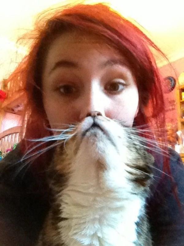 cat-beards-24