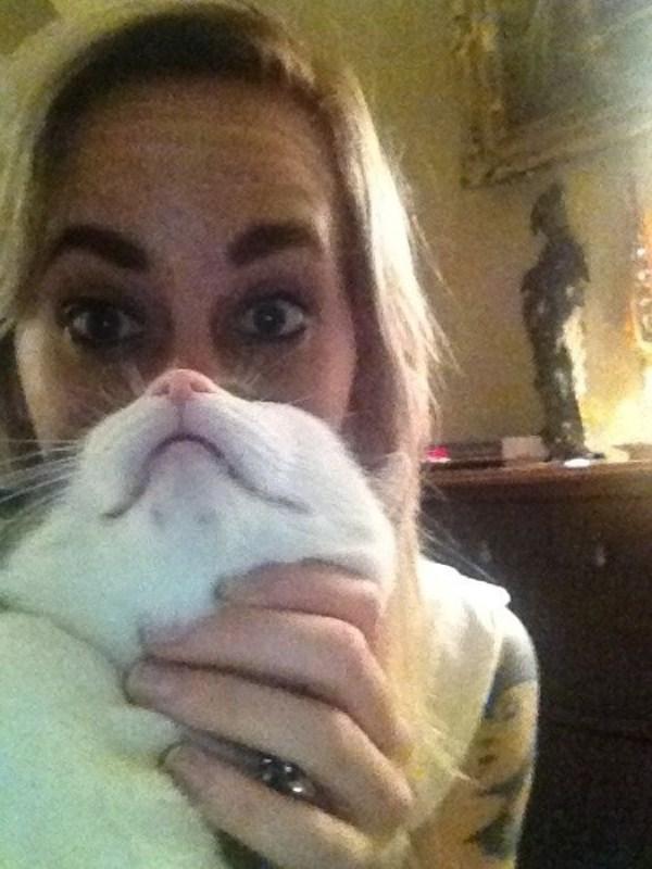 cat-beards-3