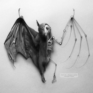Scary Taxidermied Animals (40 photos) 31