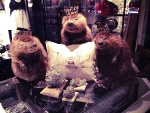 Scary Taxidermied Animals (40 photos) 35
