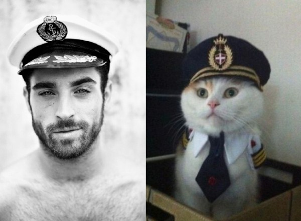 Cats Who Could Be Male Models (128 photos) 127