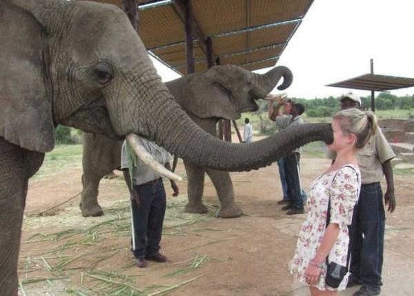 women vs animals 21 Women vs Animals (35 photos)