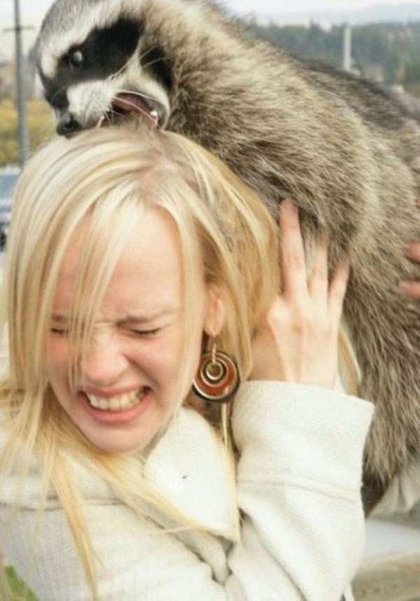women vs animals 3 Women vs Animals (35 photos)
