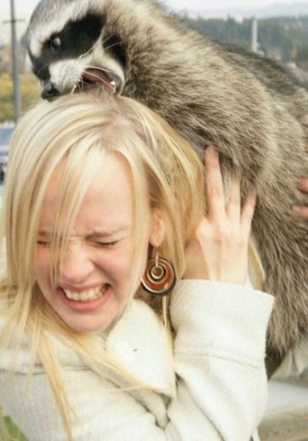 women vs animals 3 pictures