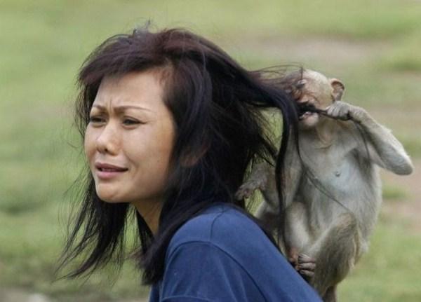 women vs animals 30 Women vs Animals (35 photos)