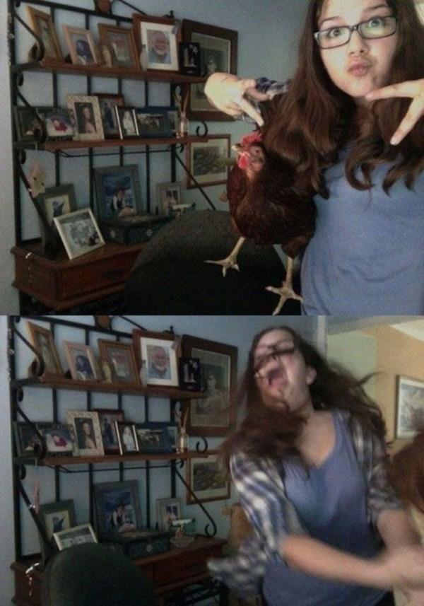 women vs animals 35 pictures