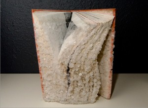 Old Books Crystalized to Create Artwork (15 photos) 10