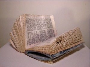 Old Books Crystalized to Create Artwork (15 photos) 13
