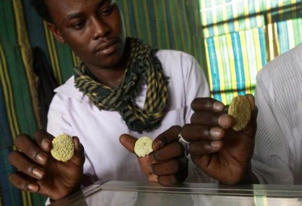 1419 Gold Miners στο Σουδάν (15 φωτογραφίες)
