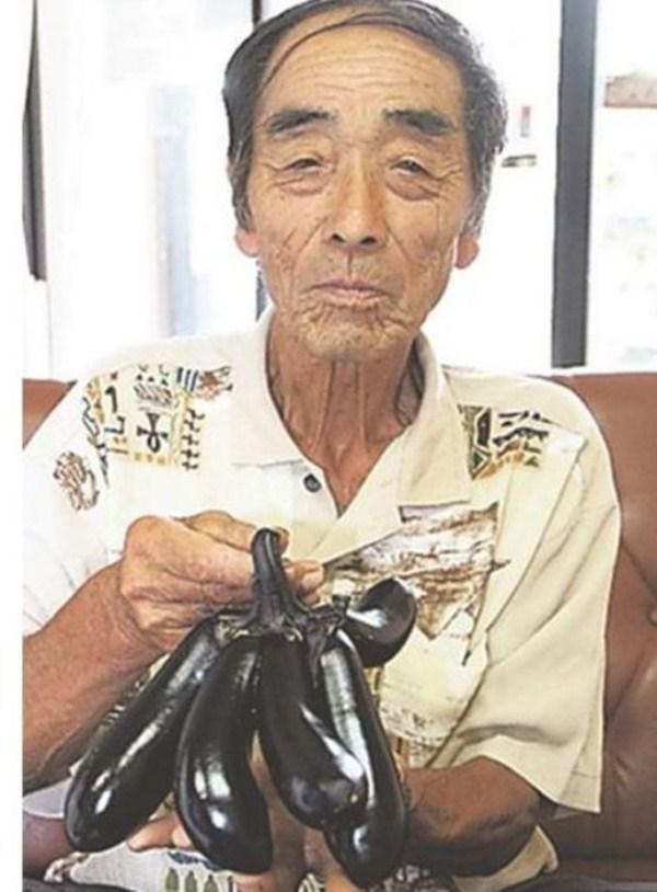 μεταλλάξεις των Μεταλλαγμένων Φουκουσίμα 4 της Φουκουσίμα (35 φωτογραφίες)
