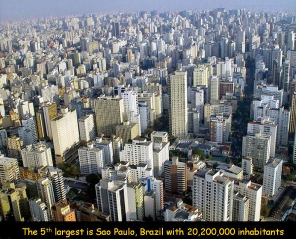 The Most Populous Cities in the World (20 photos) 16