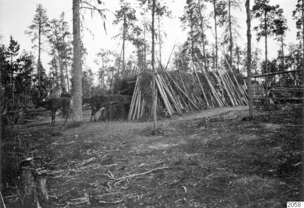 1025 Russian Village Life in 1910 (37 photos)