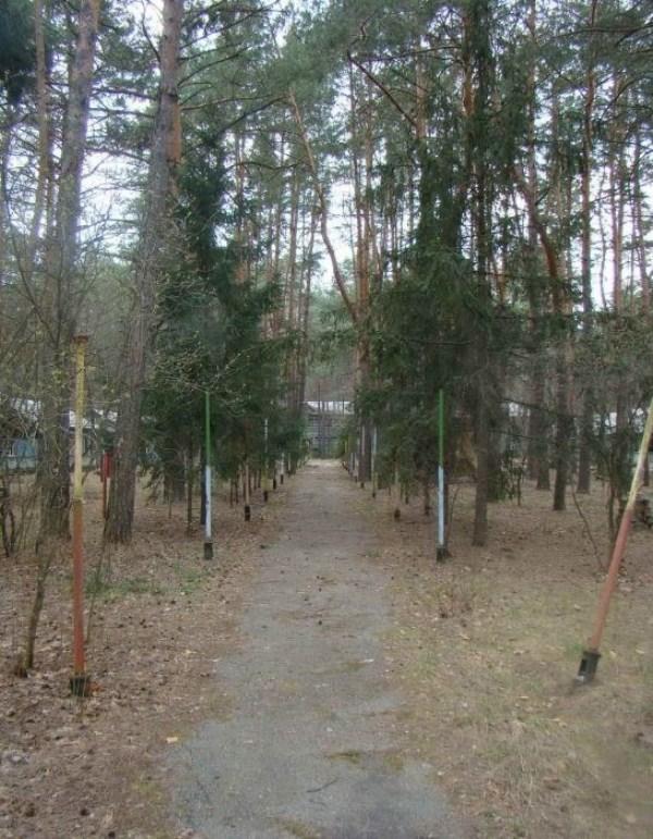 1142 Εγκαταλελειμμένα Καλοκαιρινές κατασκηνώσεις στη Ρωσία (39 φωτογραφίες)