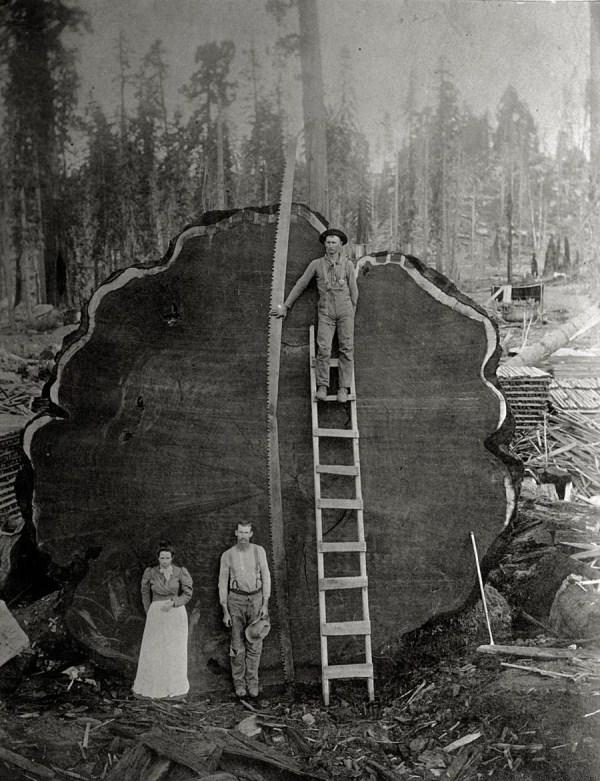 388 Σπάνιες Ιστορικές Φωτογραφίες με τις περιγραφές (30 φωτογραφίες)