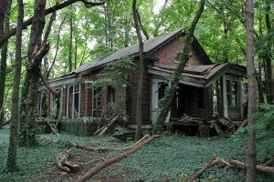 Abandoned Island in the Middle of NYC (28 photos) 1