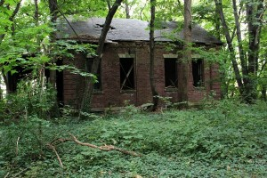 Abandoned Island in the Middle of NYC (28 photos) 2