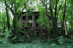 Abandoned Island in the Middle of NYC (28 photos) 15