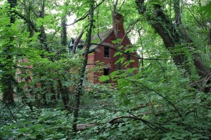 Abandoned Island in the Middle of NYC (28 photos) 21