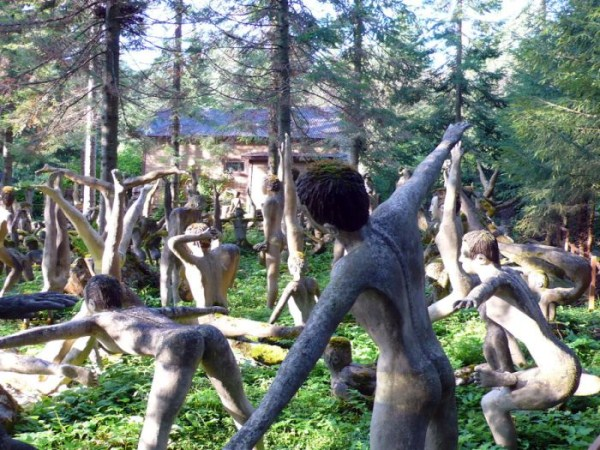 creepy-forest-in-finland-3