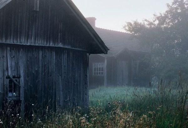 finish_woodland_houses_inhabited_by_animals_640_02