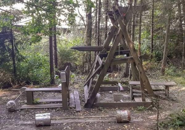 forest-gym-1