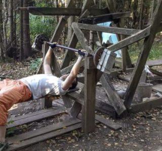 Forest Gym (16 photos)