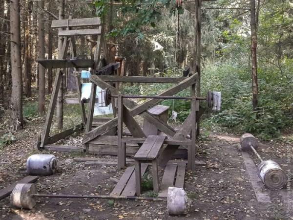 forest-gym-2