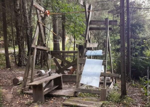 forest-gym-8