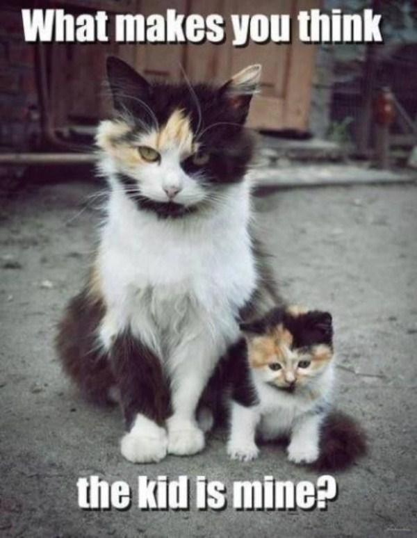 like-father-like-son-15