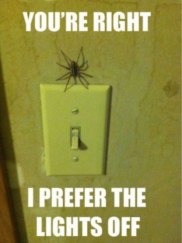yikes thats some creepy things 06 1 Scary and Creepy Things (51 photos)