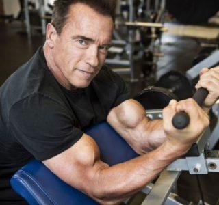 Arnold Schwarzenegger is Back (13 photos)