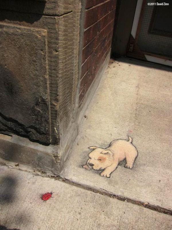 Chalk-Art-street-art-by-David-Zinn-20