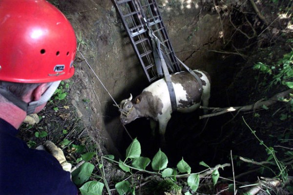 an_impressive_assortment_of_sinkhole_pictures_640_07