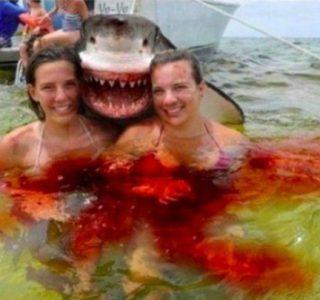 33 Obviously Photoshopped Photos (33 photos)