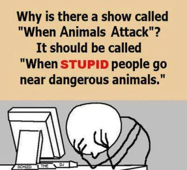 facepalm-moments-3-18