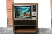 fish-tank-made-out-of-an-old-tv-19