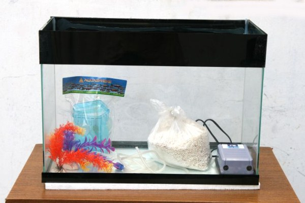 fish-tank-made-out-of-an-old-tv-9