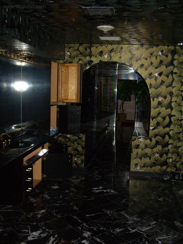 mike tyson mansion 51 Mike Tysons Abandoned Mansion (58 photos)