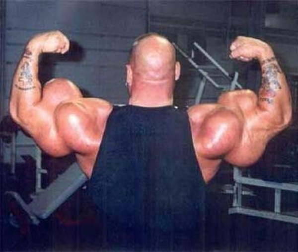 synthol_muscles (32)
