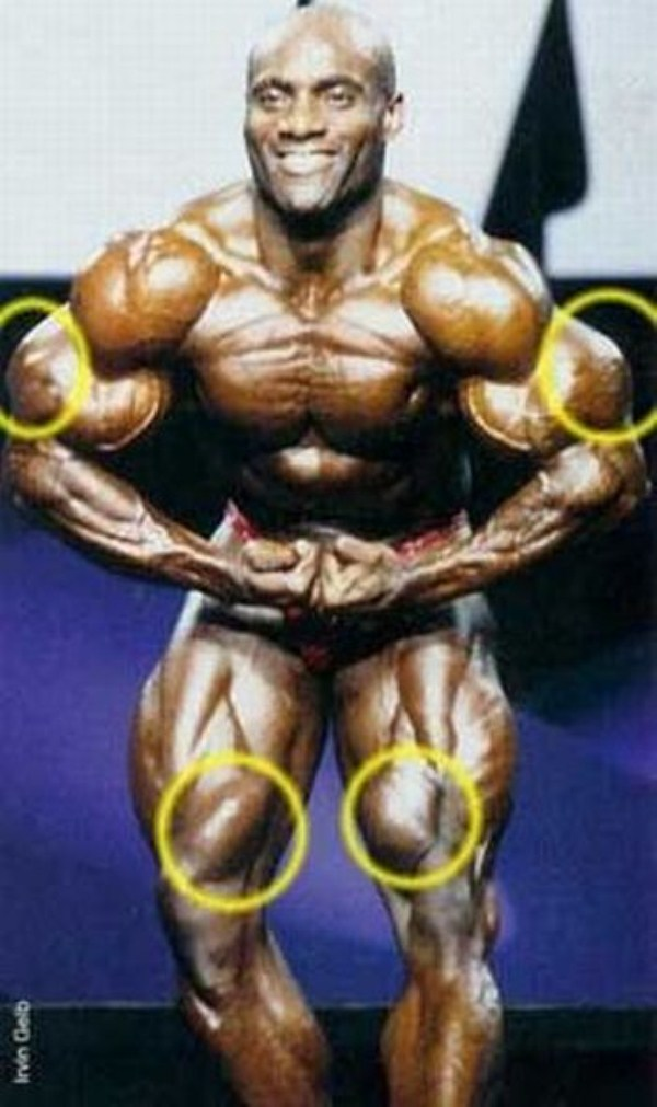 synthol_muscles (47)
