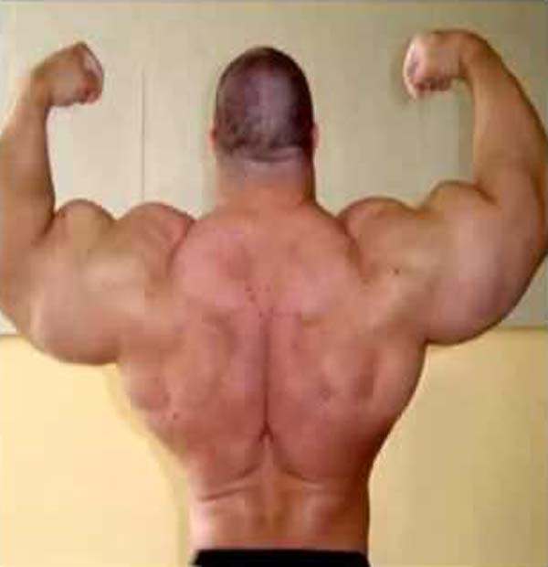 synthol_muscles (66)
