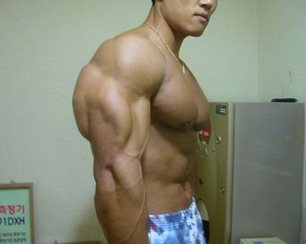 synthol_muscles (68)
