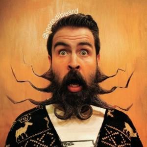 The Guy with an Incredible Beard (22 photos) 8