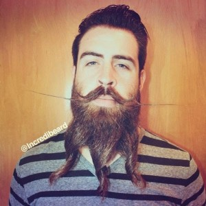 The Guy with an Incredible Beard (22 photos) 9