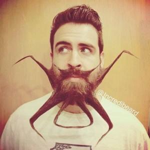 The Guy with an Incredible Beard (22 photos) 12