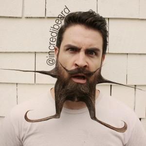 The Guy with an Incredible Beard (22 photos) 16